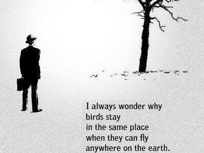Можете ли да летите на високо?