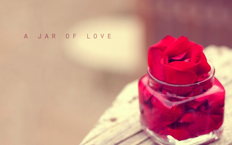 Не трябва да търсиш любовта, а просто да откриеш преградите в себе си, които си издигнал срещу нея