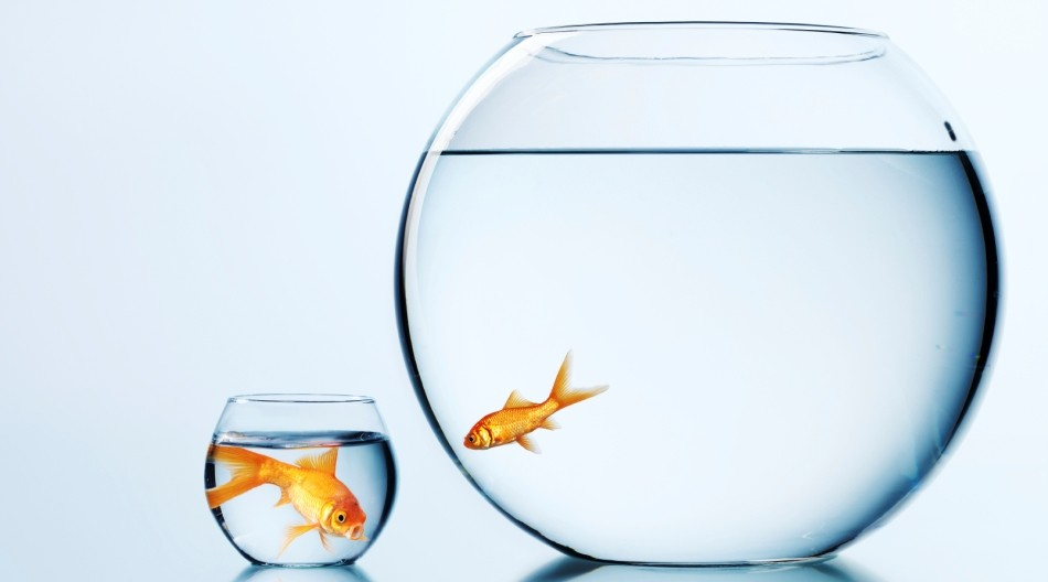 Да спрем да сравняваме живота си с другите. И да започнем да го живеем.